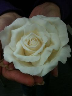 Cream Icing Rose Tutorial