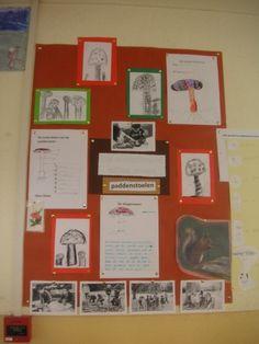 Onwijs 7 beste afbeeldingen van muurkrant - Onderwijs, Onderzoekend leren RF-01