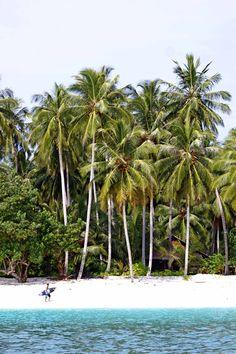 mentawais island