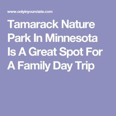 Tamarack Nature Park In Minnesota Is A Great Spot For A Family Day Trip
