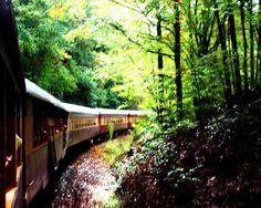 love trains!