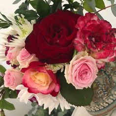 Heidi Shedlock (@heidishedlock) • Instagram photos and videos South Africa, Photo And Video, Rose, Videos, Artist, Flowers, Plants, Photos, Instagram