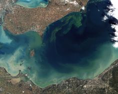Incredible Images of Algal Blooms Taken From Space | WIRED
