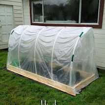 Hometalk :: Growing Tomatoes in the Pacific Northwest can be a challenge, ...Homemade Greenhouse!