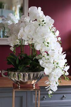 Silk Orchids, Orchids Garden, Orchid Plants, White Orchids, Phalaenopsis Orchid, Arrangements Ikebana, Orchid Flower Arrangements, Creative Flower Arrangements, Orchid Centerpieces