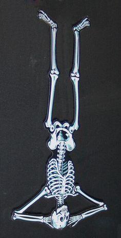 skeleton yoga on pinterest  31 pins