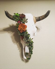 SkullsByAshley on Etsy Skull Crafts, Antler Crafts, Antler Art, Bull Skulls, Deer Skulls, Animal Skulls, Elk Skull, Cow Skull Decor, Cow Skull Art
