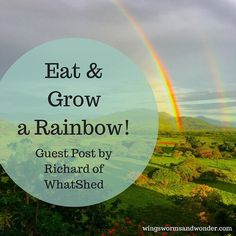 Check out the great information in this post from the august guest post series on the blog! You'll be inspired to eat a rainbow! . . . . . . . #wingswormsandwonder #eatarainbow #blog #guestblog #nutritioniskey #eatyourveggies #gardeningisfun #growveggies