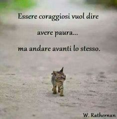 be courageous means to be afraid . but go ahead anyway Me Quotes, Funny Quotes, Love Moon, Italian Quotes, Italian Humor, Italian Language, Interesting Quotes, True Words, Beautiful Words
