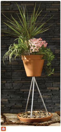 Take your potted plants to new heights with this DIY project. It's the perfect décor to add to your outdoor space. Outdoor Projects, Diy Projects, Growing Greens, Potted Plants, Affair, Basement, Planter Pots, Decor Ideas, Space