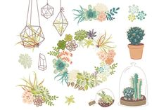 Here's an example of possible images to use on your invitations if you are going the succulent direction OR if you are interested in this type of invite?? I don't know... I just saw them and thought I'd share IN CASE.