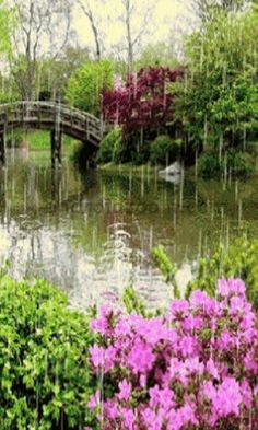 Spring Rain...ahh I just can't get over how beautiful this is!! It's romantic too...