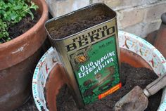 Steps for up-cycling of an old oil tin can into flower pot! See full diy here at www.knickerelasticfantastic.blogspot.co.uk