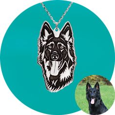 Enamel, Accessories, Photos, Dog, Silver Jewellery, Templates, Dogs, Vitreous Enamel, Enamels