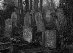 Cementerio abandonado.