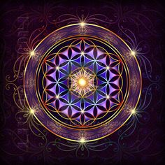 Purple Flower of Life by Lilyas
