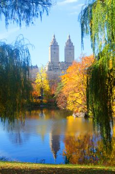 Fall in Central Park....