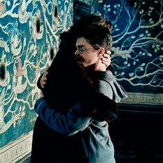 """Curiosità sul libro """"Harry Potter e l'Ordine della Fenice"""" - Life is a Book"""