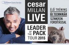Cesar Millan, Budapest, Places To Visit, Tours, Live