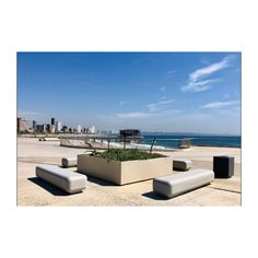 Innovators in all weather, light weight polyconcrete Trough Planters, Planter Pots, Outdoor Landscaping, Outdoor Decor, Concrete Materials, Reinforced Concrete, Higher Design, Irrigation, Planting