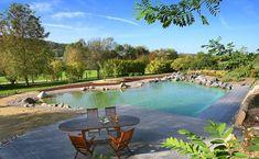 Bassin de baigande paysagère Decoration, Outdoor Decor, Home Decor, Gardens, Natural Pools, Garden Ponds, Natural Decorating, Swim, Landscape Planner