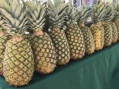 A pineapple a day keeps the blues away. Shop for local fruit at the Lincoln road Farmers Market every Sunday.