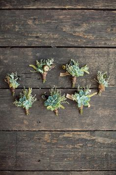 lovely collection of succulent boutonnieres // photo by AshleyRosePhotography.com