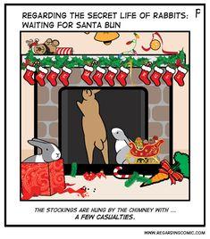 The anticipation … Bunny Meme, Funny Bunnies, Bun Bun, Buns, Secret Life Of Rabbits, Bunny Halloween Costume, Funny Rabbit, Little Gentleman, Fluffy Bunny