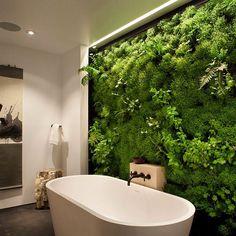 Moss Wall In Bathroom ! by istosapp