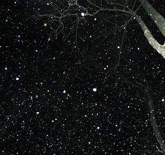 Taken by maddie mcBride. Snow falling.
