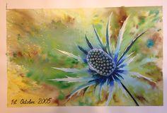 Eryngium or sea holly. #art #artist #brusho #watercolor #painting
