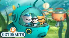 Octonauts: Creatures A to Z (UK Version) Big Crab, Little Octopus, Plant Paradox, New Theme, Best Youtubers, Kids Videos, Cartoon Kids, Season 4, Discovery 2