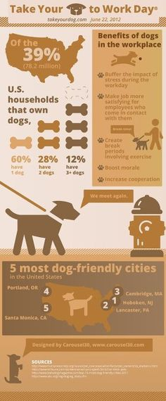 Take Your Dog to Work Day! Are you bringing Fido to the office? Dogs in the office help reduce stress...