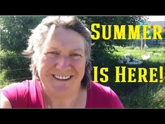 Summer is here | Protecting cabbages and greens