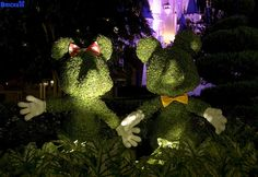Mickey  Minnie topiaries