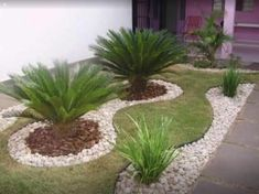 Trendy Landscape Ideas With Rocks Yards Driveways Ideas Palm Trees Landscaping, Gravel Landscaping, Outdoor Landscaping, Front Yard Landscaping, Outdoor Gardens, Front Yard Garden Design, Garden Landscape Design, Rock Yard, Garden Deco