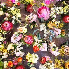 spring flowers | native | pink | red | gum leave | protea | blossom | ranunculus | hyacinth | wedding flowers | yarra valley | Sugar Bee Flowers