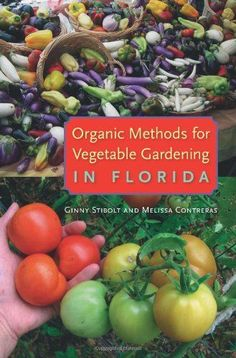 Organic Methods for Vegetable Gardening in Florida - http://goodvibeorganics.com/organic-methods-for-vegetable-gardening-in-florida/