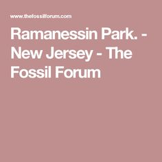 Ramanessin Park. - New Jersey - The Fossil Forum