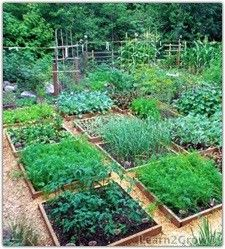 Potager Garden Small square shaped raised garden beds beautiful laundry for a vegetable garden Potager Garden, Edible Garden, Vegetable Garden, Garden Landscaping, Raised Garden Beds, Raised Beds, Raised Gardens, Kraut, Dream Garden
