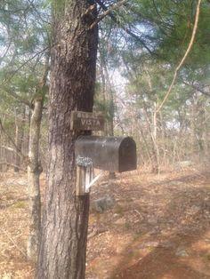 Earth Day Hike, Appalachian Trail Vernon NJ -bykarenokeefe