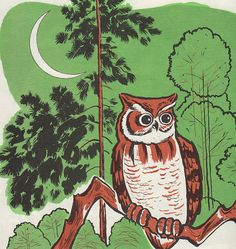 """Sally, the Screech Owl"" by Gene Darby, illustrated by Edward Miller (1974)"