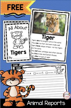 FREE Tiger Mini Unit - Zoo Animals - Animal Report for Kids - Nonfiction reading and writing unit - ZOO ANIMALS - All About Tigers - Kindergarten and first grade science - second grade reading and writing FREEBIE Kindergarten Writing Activities, Writing Curriculum, Kindergarten Freebies, Teaching Writing, Free Activities, Homeschooling, Writing Worksheets, Informative Writing Kindergarten, Writing Topics