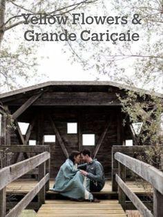 Alors je choisis de vous montrer pour commencer cette semaine la séance engagement de Marielle & Simon. De la nature, de l'amour et du bonheur.  C'est dans la grande cariçaie du lac de Neuchâtel, du côté de Cudrefin que nous nous sommes retrouvés. Entre nous je dois avouer que je ne connaissais pas cet endroit. Ça a été une bien belle découverte pour moi! Un endroit où je repartirai me promener en famille. (la suite sur le blog) #engagement #mariage #séance #photo #photographie #suisse #love Yellow Flowers, Engagement, House Styles, Photo Shoot, Switzerland, Bonheur, Weddings, Photography, Engagements