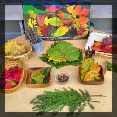 Autumn Provocation l I love this Leaf Man Provocation from The Simplicity of Learning Fall Preschool, Kindergarten Science, Preschool Activities, Preschool Centers, Reggio Emilia, Inquiry Based Learning, Early Learning, Autumn Art, Autumn Theme