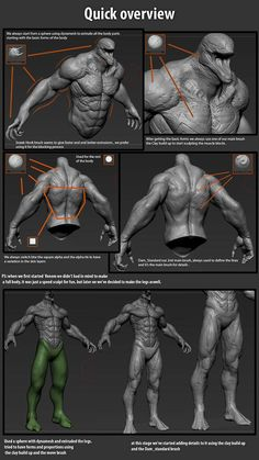 Tutorial: Good work examples for muscle detail and overall anatomy. I also really love that its venom. Sculpting Tutorials, Eye Drawing Tutorials, Digital Painting Tutorials, Digital Paintings, Drawing Tips, Zbrush Anatomy, 3d Anatomy, Human Anatomy, Zbrush Character