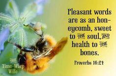 Proverbs 16:24
