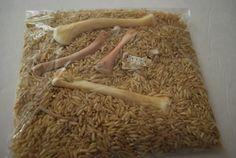 Dinosaur Bone Excavation Sensory Bag