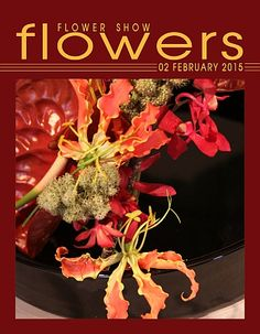 02 February 2015 – The Year in Flowers  FLOWER SHOW FLOWERS at: http://www.flowershowflowers.com/blog  Plant Material List: Anthurium Flowers and Foliage Gloriosa Lilies James Storie Aranthera Orchids Millet
