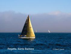 Regatta, Santa Barbara http://cheshirecatphoto.com/pages/news.html